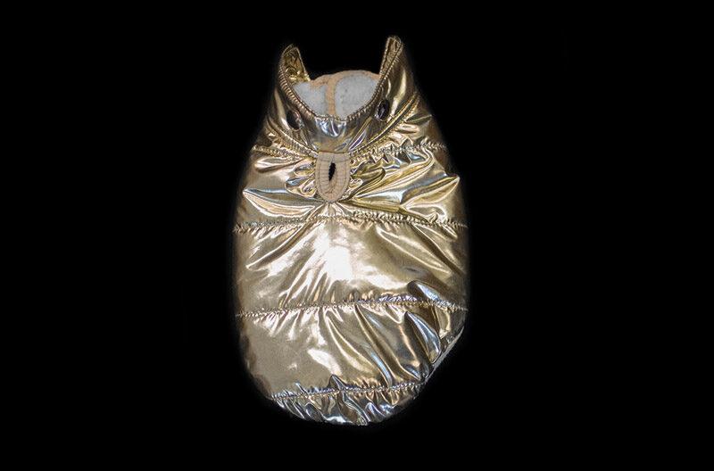 Gold Metallic Winter Coat