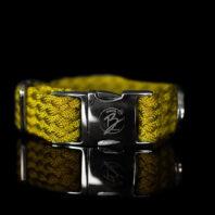 Gold Metallic Collar