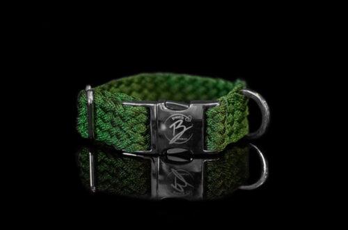 Green Metallic Braided Collar