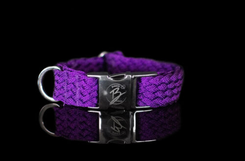 Purple Metallic Collar