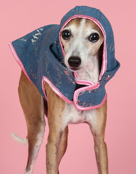 Denim Dog Coat