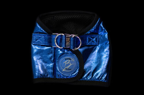 Blue Faux Leather Harness
