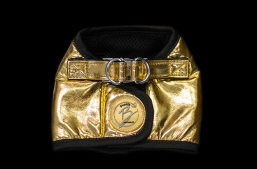 Gold Faux Leather Harness