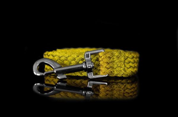 Gold Metallic Braided Leash