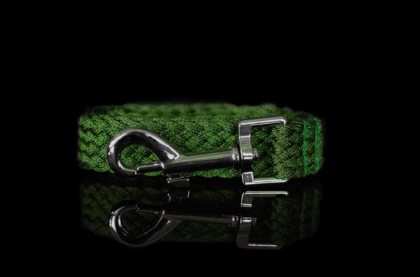 Green Metallic Leash