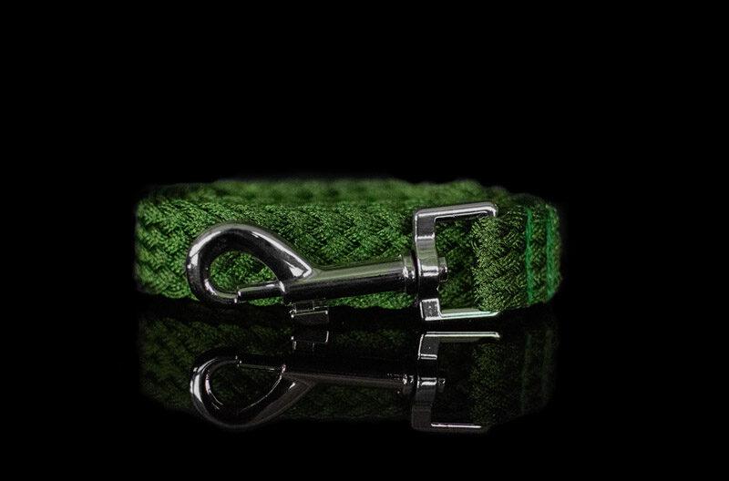 Green Metallic Leash