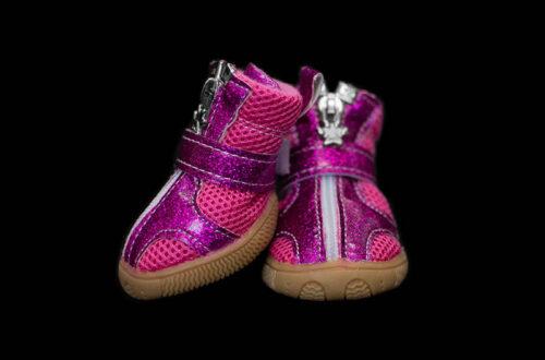 Pink-Purple Haze Mesh Dog Booties