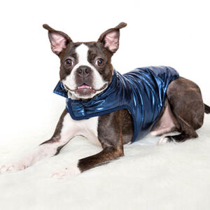 Blue Metallic Dog Puffer Coat