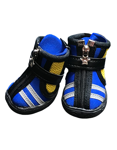 blue striped dog shoe