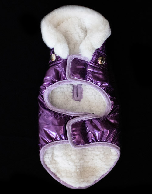 purple winter dog coat