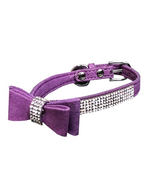 purple dog collar with bowtie