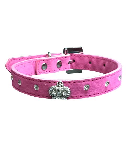 studded crown diamond pink dog collar