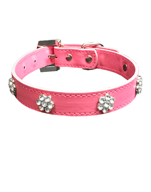 pink studded flower diamond dog collar