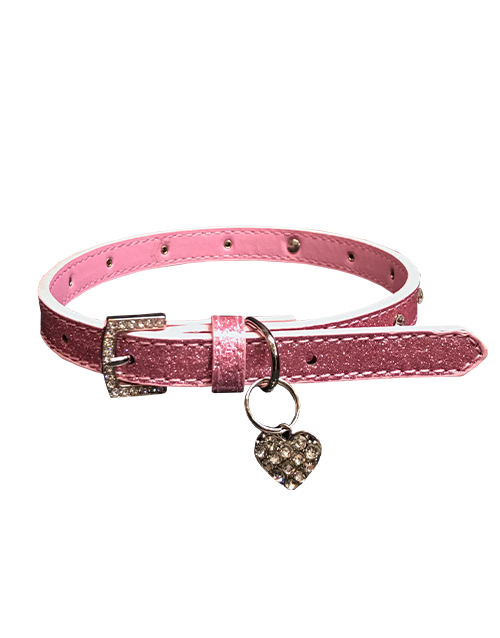 dog collar with rhinestones