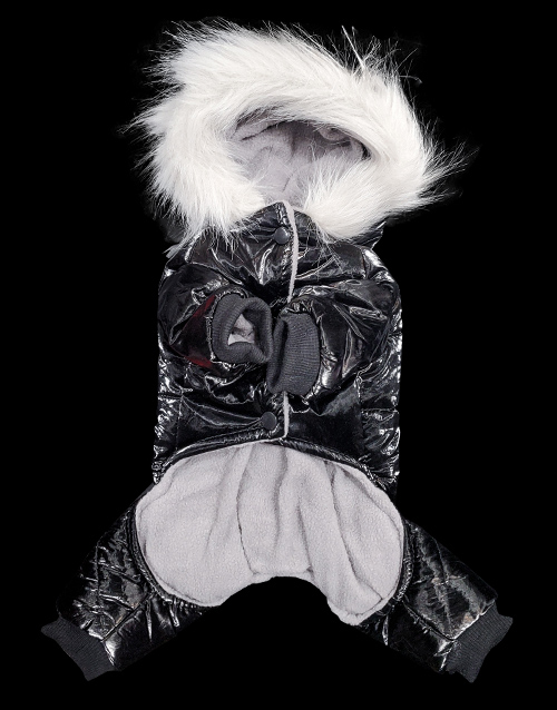 black dog snowsuit metallic
