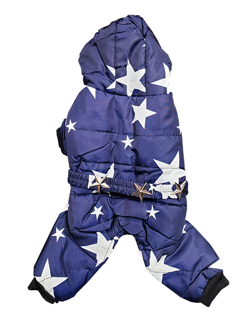 navy dog snowsuit with stars