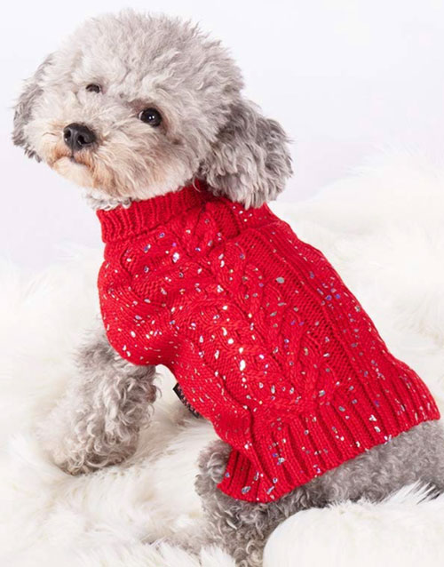 Red dog sweater